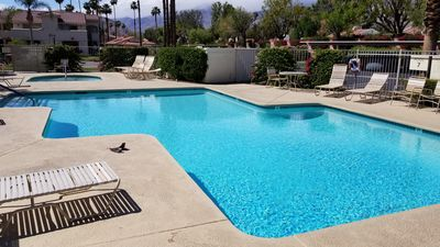 pools and jacuzzi and tennis pool on grounds