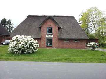 Well-kept thatched cottage near the North Sea with sauna, fireplace, conservatory and garden