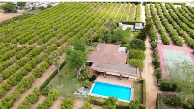 Photo for Country house with pool, in orange groves, 25 kms from the center of Seville