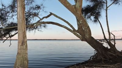 "Photo for WATERFRONT ""Jervis Bay Escape Cooinda"""