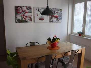 Family-friendly apartment in downtown
