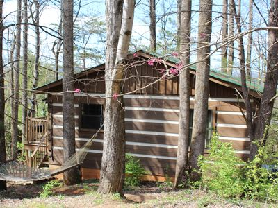 Photo for Newly renovated Treehouse cottage! Free WiFi! Stay a week & 7th night's FREE!