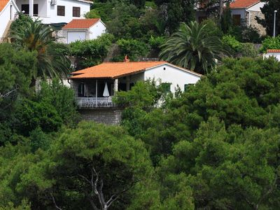 Photo for House in Postira (Brač), capacity 4+1