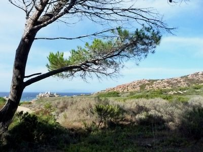 Photo for Cottage-Apartment In Rural Sardinia With Blue Sea Views And Beach