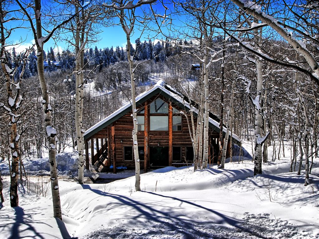 Rustic Cabin Getaway Perfect For Large Groups