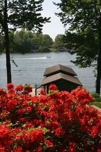 Photo for Budget Friendly Cottage Charm Wide Water Views w/ Wifi  on Smith Mountain Lake