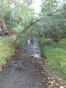 Photo for Cozy And Quiet House On South Boulder Creek!!