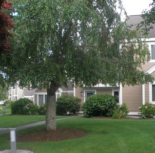 Photo for Beautiful Ocean Edge 2 BR Townhouse, WiFi A/C Golf Course View Private Backyard