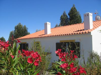 Photo for Beautiful holiday homes completely in nature with swimming pool near the sea!