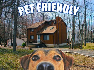Photo for Pet Friendly on a Quiet Road / Walking Distance to Beach #2 / Pet Friendly
