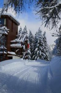 Photo for Arc 1800 - Duplex of 34 m² in a quiet residence - door Access - near the slopes and ski lifts