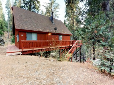 Photo for Rustic, dog-friendly cabin in the forest - perfect for year-round getaways