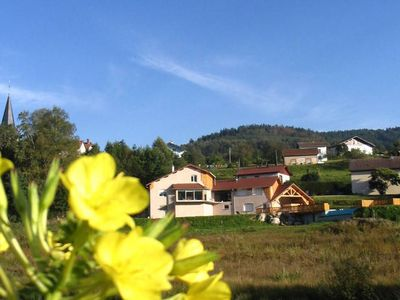 Photo for Individual chalets with swimming pool in the heart of the Vosges