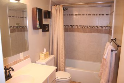 Recently Upgraded Bathroom and New Delta In2ition Showerhead w/ Hand Shower