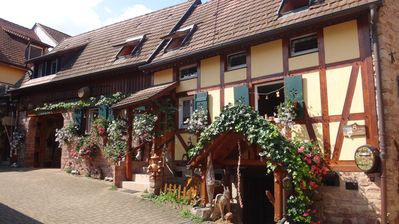 Photo for Very charming half-timbered Alsatian house on the Alsace Wine Route