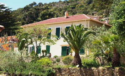 Photo for Apartment in a traditional Provencal mas with direct access to the sea