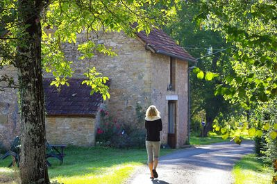 A guest walking down the walnut tree line driveway