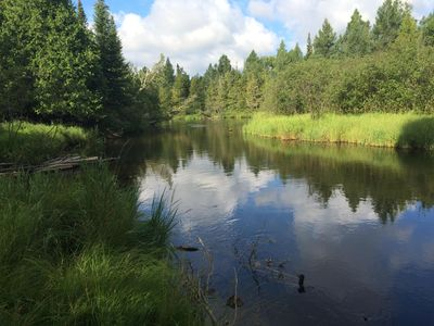 Down Stream from your dock on the beautiful AuSable River