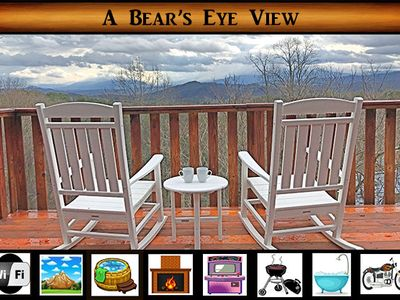 Photo for A Bear's Eye View