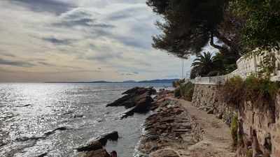 Photo for Studio cabin in Boulouris (Saint Raphaël 83) 200 m from the sea