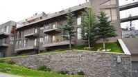 Great condo at Crested Butte