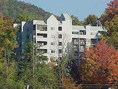 Photo for 1 bedroom Condo less than a mile from Downtown. Swimming pool access (seasonal), Wi-Fi & FP