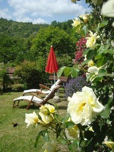 Photo for Traditional stone villa Tuscan panorama relax