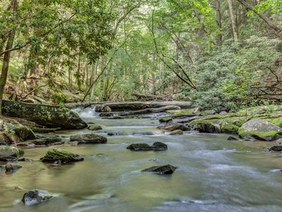 Photo for Cascading waterfalls, beautiful surroundings and four trout ponds nearby