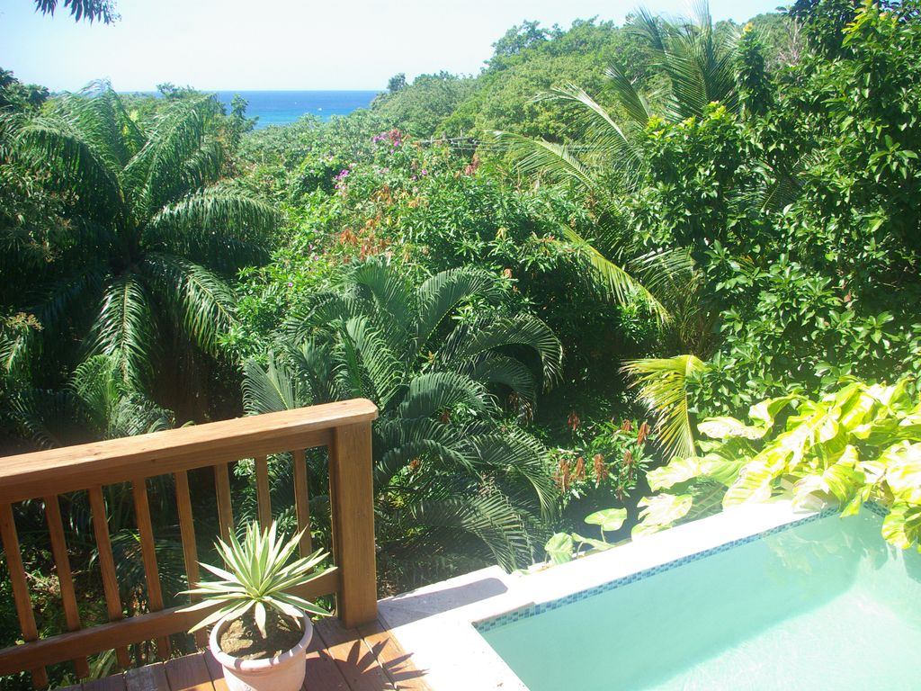 Ideal Location! Deck Pool, Ocean View, 5 Bedrooms, private setting