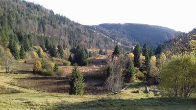 Photo for Panoramic apartment on the slopes of Labresse and the Peat bog