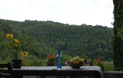 Photo for Chianti Mariuccia apartment on two levels in the green between forests and vineyards