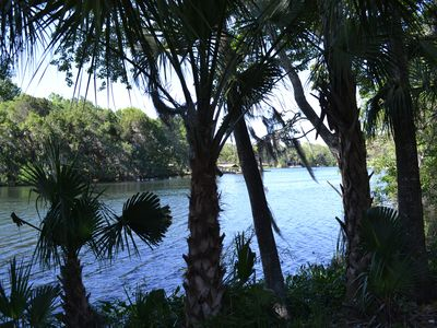 Photo for Gorgeous Homosassa Riverfront Lodge  Nature Coast located  Close to Spring