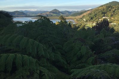 Morning view of estuary from deck