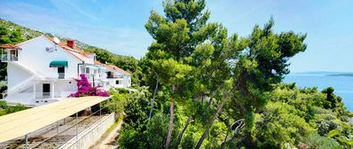 Photo for Island Hvar Zavala apartment with wonderfull sea views in the shade of pine tree