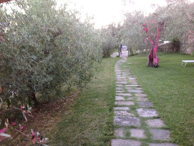 Photo for Lodge in the olive grove - Poggio alla Pieve Relais