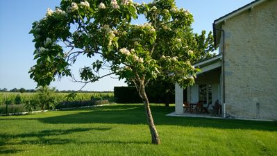 Photo for Airial - 5-star cottage in the heart of the vineyard of Chateau Tourteau Chollet