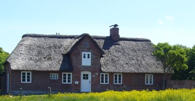 Photo for Comfortable, thatched-roof Frisian house w/ a view of the Marsh, garden & patio
