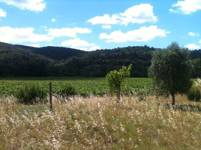 Photo for Large country house with land near Lagrasse