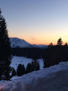 Photo for App 4/6 - Domaine de l'Arselle 1700M - in the heart of nature - South expo