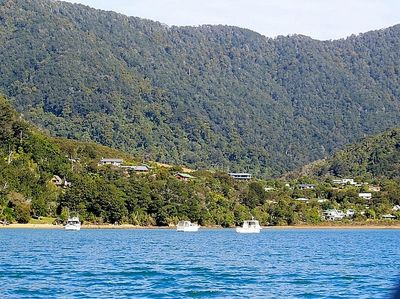 Duncan Bay - Not Taken From Property