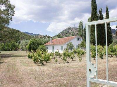 Photo for A cottage hidden in vine and olive grooves