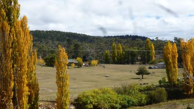 Photo for Woodvale at Cooma Mini Farm Stay