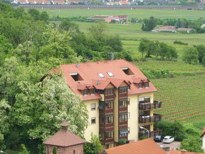 Photo for Apartment in fantastic location with view to the wineyards and the forrest