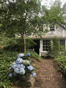 Photo for Nature abounds, rare cape cod wildlife waterfront family compound in Osterville