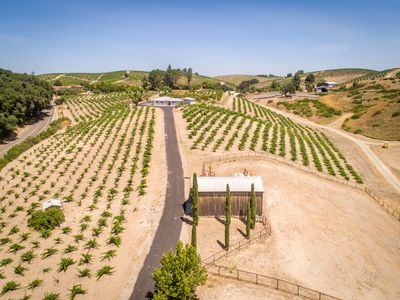 Photo for OLD VINE HOUSE-Magnificent Prime Vineyard Setting
