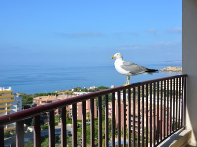 Photo for Apartment with Fantastic View on the Ocean and 300 meters from the Beach