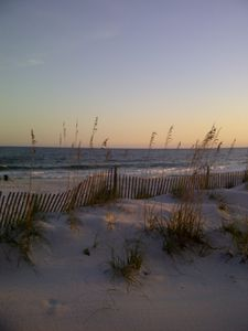 Photo for BEACH FRONT 204 on the Beach in Gulf Shores, Al.