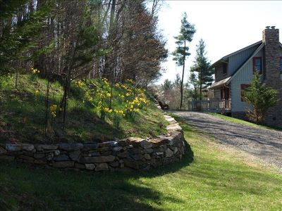 Photo for Cabin at Mill Pond,Secluded 10 Acres, Biking,Hiking,Peaceful.