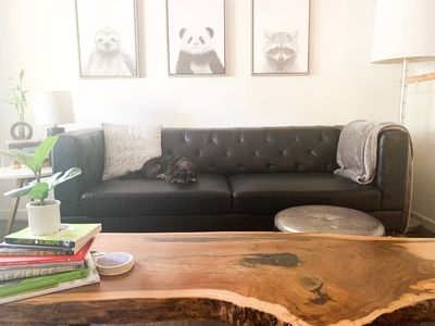 Photo for Renovated modern studio (dog-friendly)