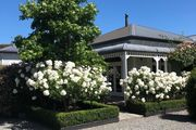 Holly's Place, Martinborough